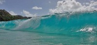 Around St BartsBid Wave