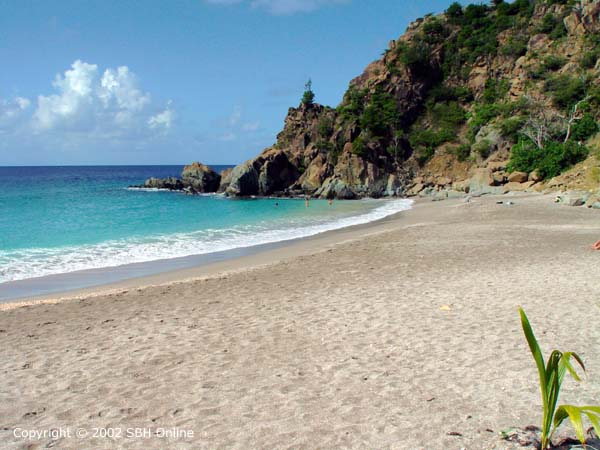 Shell-Beach-st-barts-beach